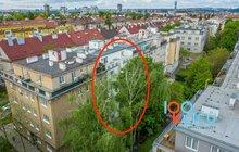 prodej-bytu-1-kk-30-m2-praha-biskupcova-f37b3428-upr-hdr-59bfc4