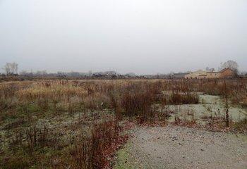 Pronájem pozemků ke komerčnímu využití, Kolín