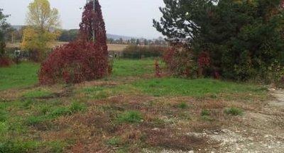 Hnedý priemyselný park Tornaľa-predaj/prenájom komerčný pozemok (sklady,haly),až 16 000m2