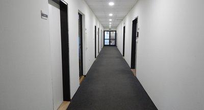 Pronájem prostor - Palmovka - 450 - 4 263 m2