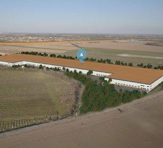 Prenájom nových výrobných alebo skladových hál Bratislava Airport / New warehouse or production halls for lease - Bratislava Airport