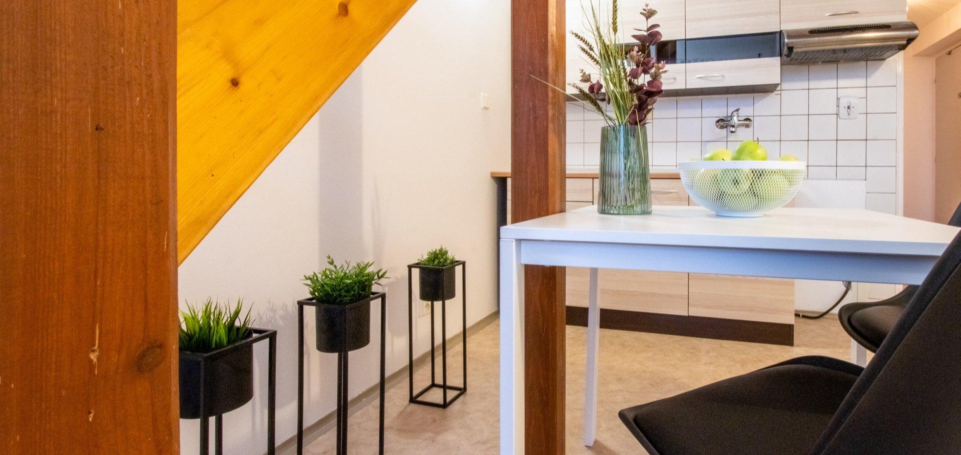 Byt 3+kk jako startovací bydlení nebo investiční příležitost Brno-Tuřany