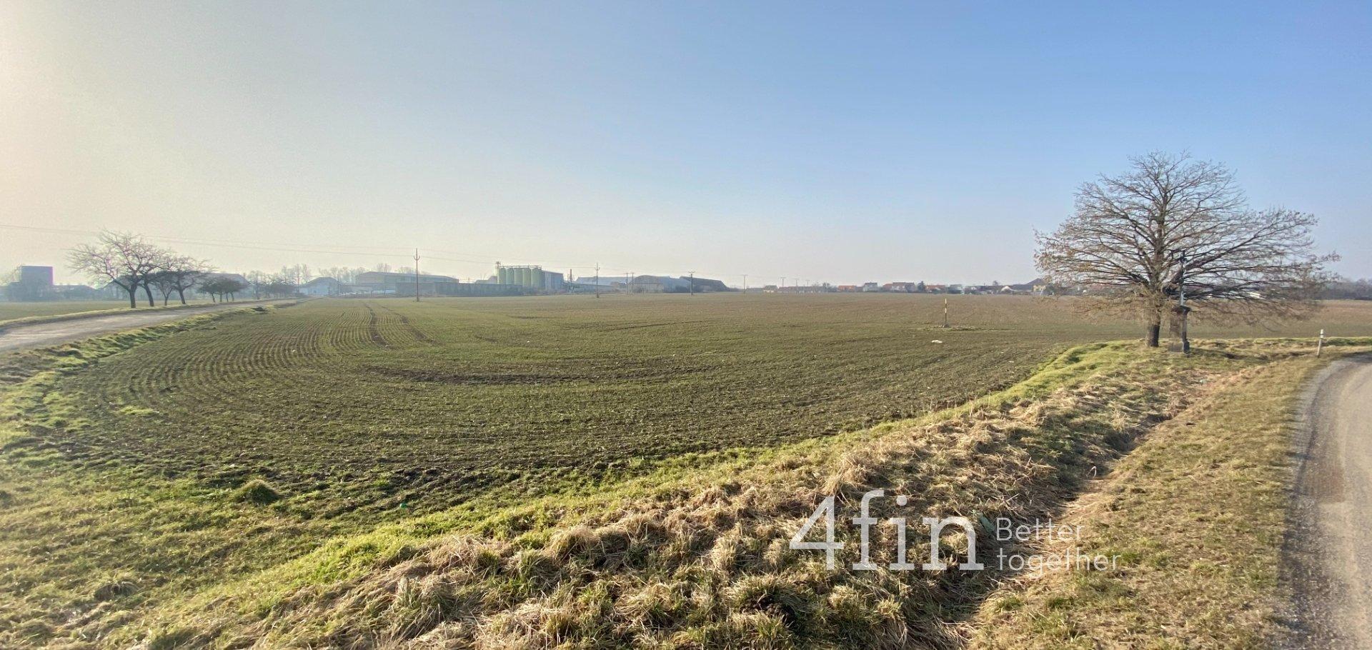 Prodej pozemku v Radkovicích u Hrotovic