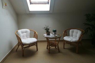 Pronájem nebytových prostor, 33 m² - Stříbro,Mánesova ulice, Ev.č.: 00171