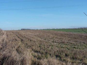 Prodej, Pozemky - trvalý travní porost, 2760m² - Praha - Lipence
