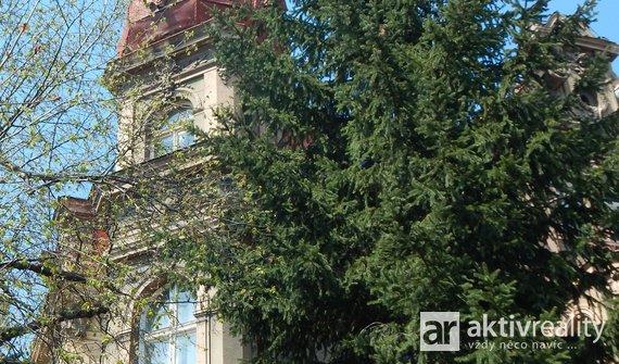 Prodej vily, 3 podlaží, vícegenerační bydlení 750m² - Most