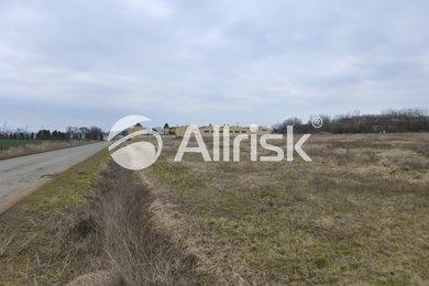 Prodej komerčního pozemku 2 ha, Ev.č.: BK130856