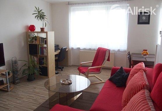 Obývací pokoj s kuchyní (3)