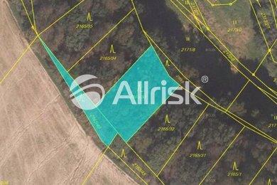 Prodej, Ostatní pozemky, 2959m² - Velká Bystřice, Ev.č.: OC030009