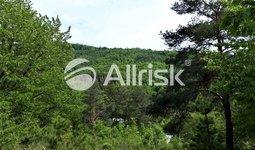 Prodej, Pozemky - zahrady, 4853 m² - Hlubočky