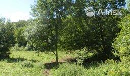 Prodej, Pozemky pro bydlení, 6342m² - Lysice
