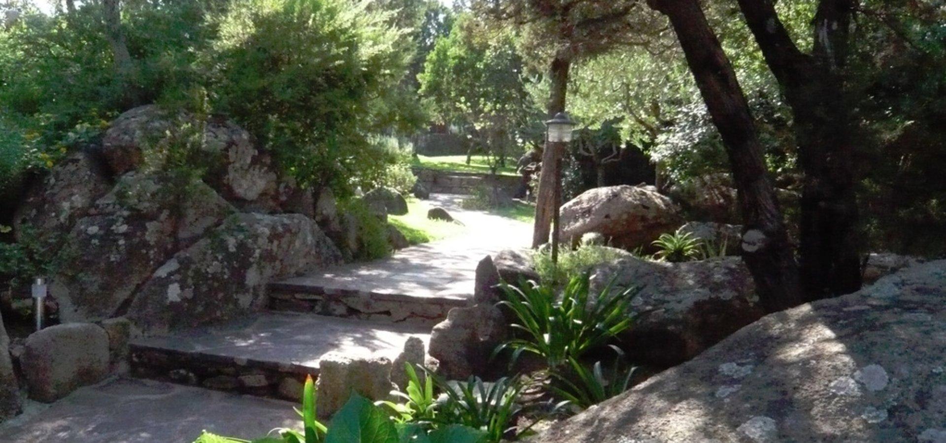zahrada..