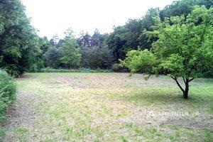 Prodej, Pozemek pro výstavbu výrobně - skladovacího areálu - 13 800 m², Ev.č.: 29469