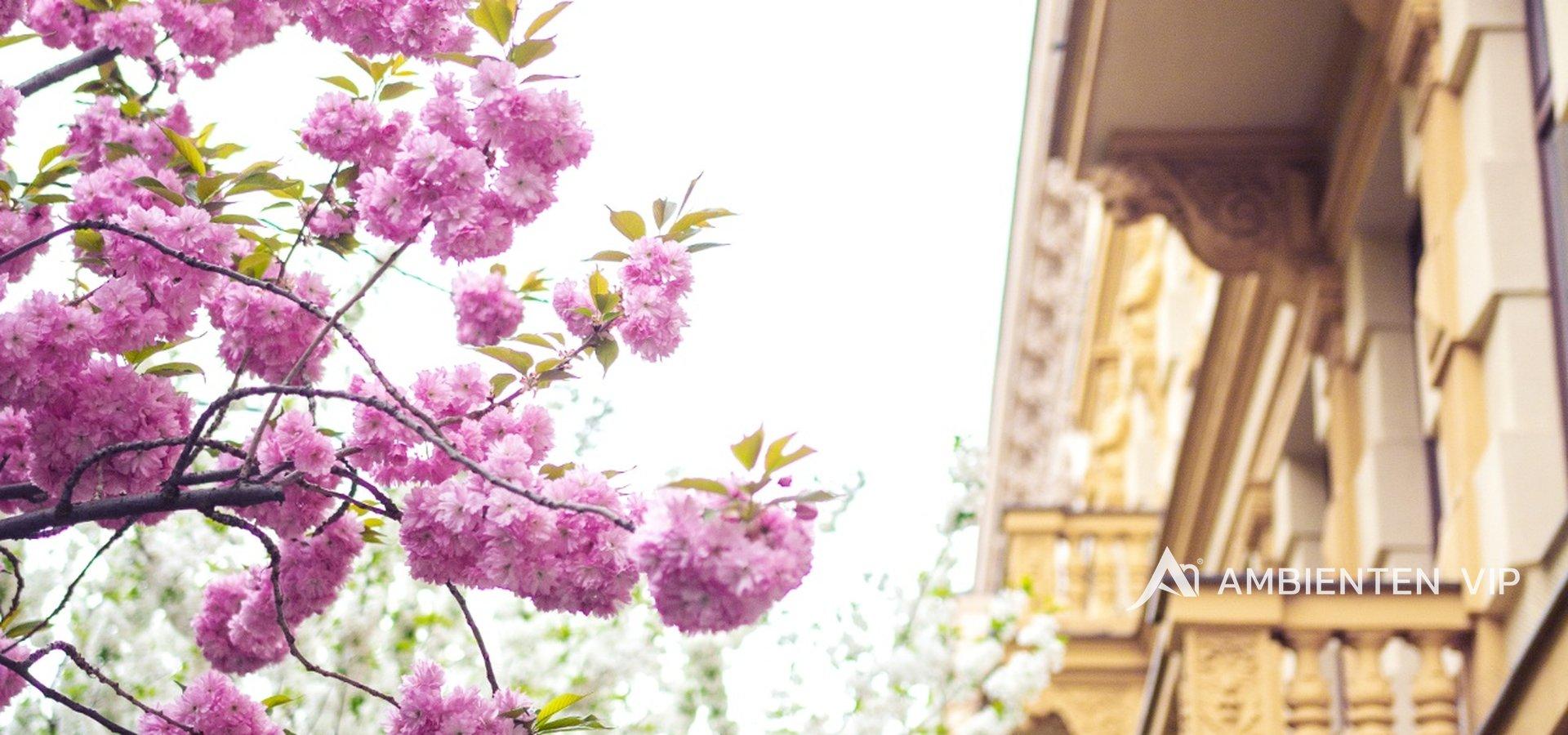 foto ulice 2
