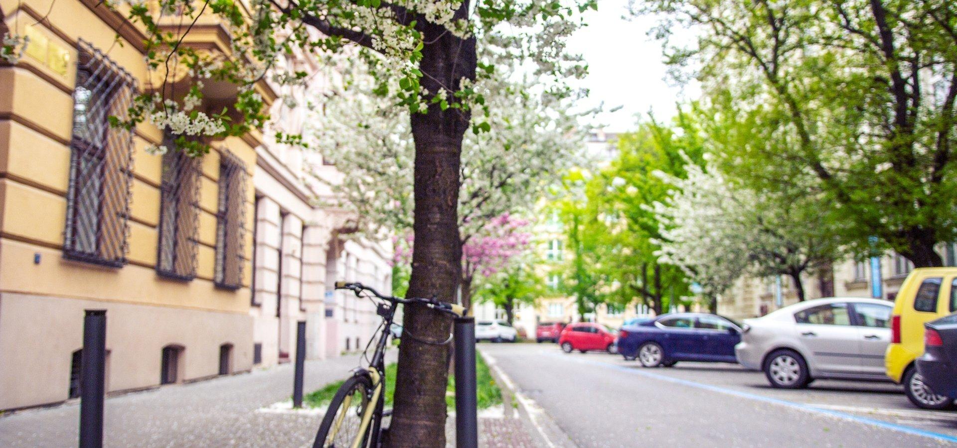 foto ulice 3
