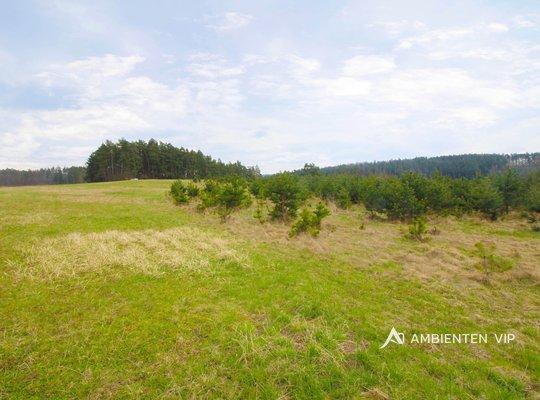 Sale, Land For housing, 25442m² - Tišnovská Nová Ves