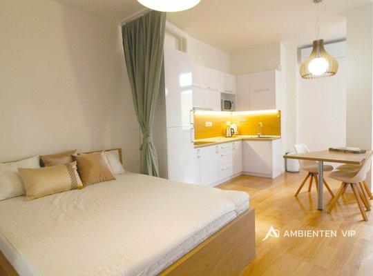 Rent, Flats 1+KT, 54m² - Brno