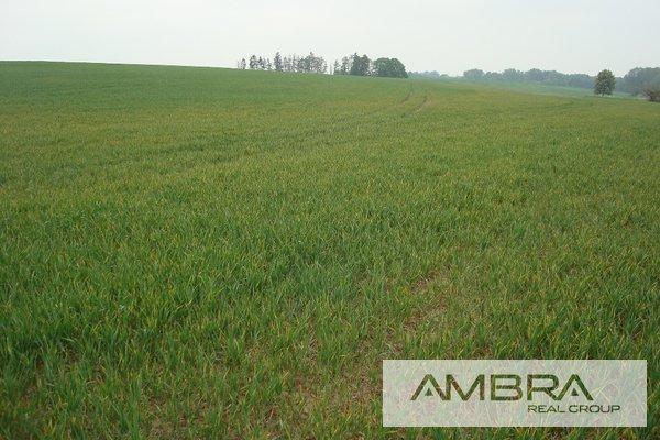 Prodej, Zemědělská půda, 44 285m² - Ostrava - Polanka nad Odrou