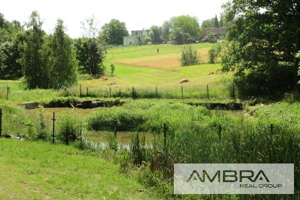 Prodej, rybník o ploše  588m² s chatkou a travnatým pozemkem o výměře 590 - Šenov