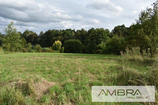 Prodej, Pozemek, 3802m² - Horní Bludovice - Prostřední Bludovice