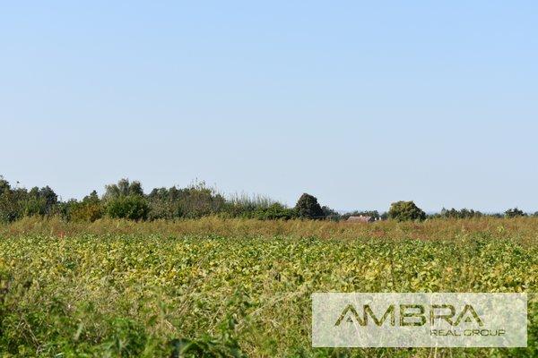 Prodej, Pozemky pro bydlení, 5125m² - Dolní Lutyně