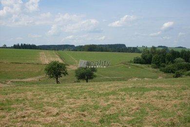 Prodej pozemku travní porost, orná půda, les a ostatní 15246m², Přibyslav, Ev.č.: 5416