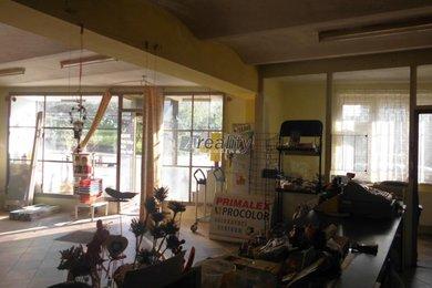 Prodej, obchodní prostory, 590 m², Košetice