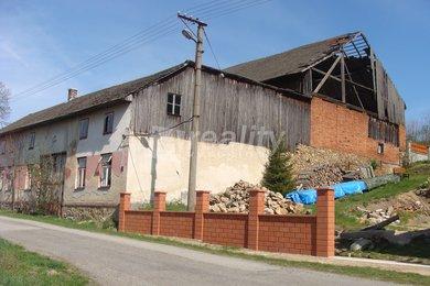 Prodej chalupy, zemědělské usedlosti, rodinného domu Havlíčkova Borová - Železné Horky, Ev.č.: 00081