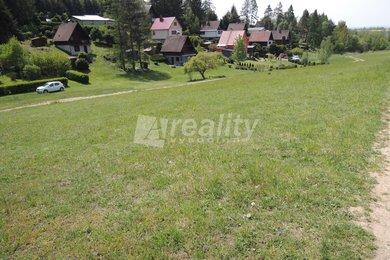 Prodej pozemků 7794 m2 a 2436 m2 v rekreační oblasti Bělizna, KÚ Pucov