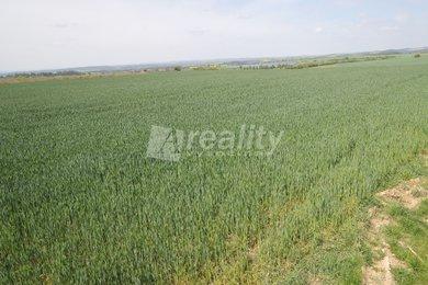 Prodej pozemků 7794 m2 a 2436 m2 v rekreační oblasti Bělizna, KÚ Pucov, Ev.č.: 00110