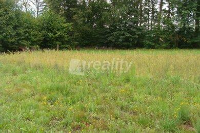 Prodej pozemku pro stavbu rodinného domu, Nová Ves u Chotěboře, Ev.č.: 00243