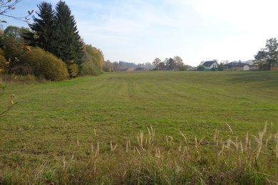 Prodej, pozemek- orná půda - zatravněné pole, 11.001 m², Rodvínov, Ev.č.: 00340