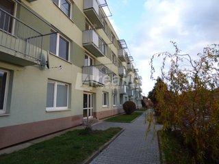 Prodej, byt, 1+1, 32 m2, Náměšť nad Oslavou