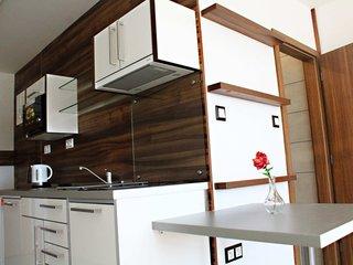 Pronájem byt 1+kk, 30 m2, Třebíč - Borovina