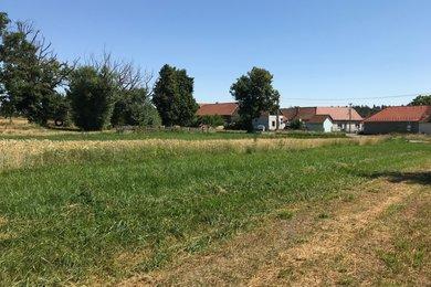 Prodej pozemky 15.000 m², Biskupice-Pulkov, Ev.č.: 00505