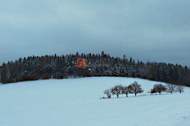 img-7112a