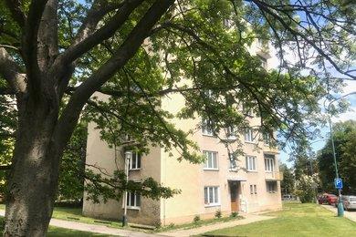 Prodej byt 1+1, 39 m², Jihlava, Ev.č.: 00604