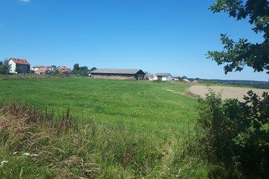 Prodej pozemků pro bydlení, Bechyně - Senožaty, Ev.č.: 00731