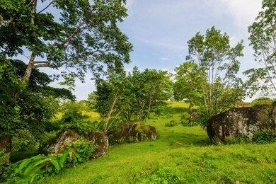 Prodej pozemků pro bydlení - Panama,  La Pintada (10.000m²), Ev.č.: 00743
