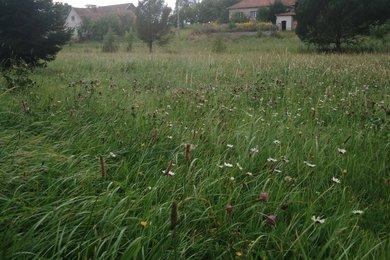 Prodej pozemky pro bydlení, 500 m2 - Kundratice, Ev.č.: 00763