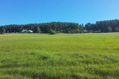 Prodej pozemků - trvalý travní porost, 23.227 m², Vinná u Křemže, Ev.č.: 00769