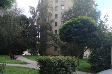 Prodej byt 3+1 s lodžií, Třebíč - Borovina, Ev.č.: 00773