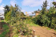 IMG_20201010_133446a