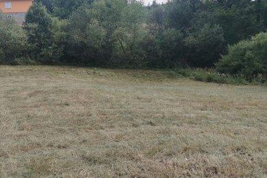 Prodej pozemku pro bydlení 2314m² - Planá nad Lužnicí, Ev.č.: 00870