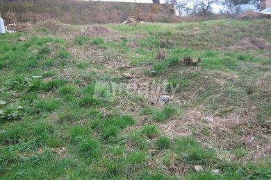 Prodej pozemku, Louňovice pod Blaníkem, Ev.č.: 00889
