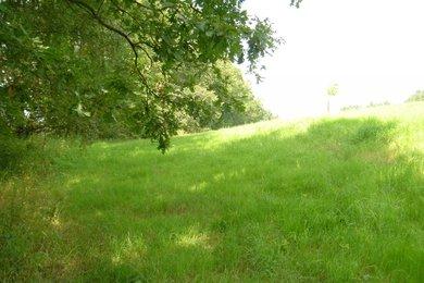 Prodej pozemků - trvalý travní porost 1336m²/2214m² - Trhové Sviny, Březí, Ev.č.: 00894