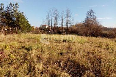 Prodej pozemku se stodolou, 2.305 m2, Štítary, okr. Znojmo, Ev.č.: 00895
