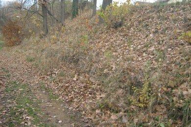 Prodej pozemek, 578 m2, Vrchotovy Janovice, okres Benešov, Ev.č.: 00906