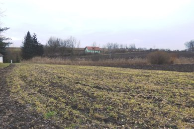 Prodej pozemku 2.106 m², Křepice, okr. Znojmo, Ev.č.: 00962