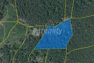 Prodej lesního pozemku 33.262 m2, Stachy - Jaroškov, okres Prachatice, Ev.č.: 00967